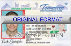 Tennessee Fake ID