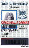 novelty id, novelty id card, driver license novelty YALE UNIVERSITY novelty id designer software custom university card